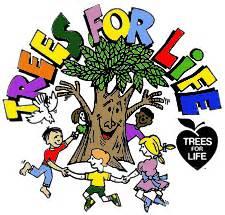 Short essay on trees Archives